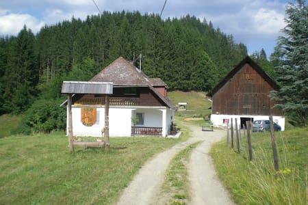 Urlaub am Reitbauernhof Luckyranch Ferienwohnung - Straßburg