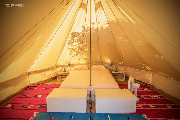 Canvas tents - Todos Santos Hostel