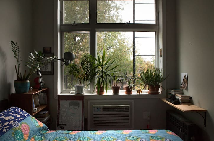 Large and bright room in beautiful Park Slope - Brooklyn - Apartament