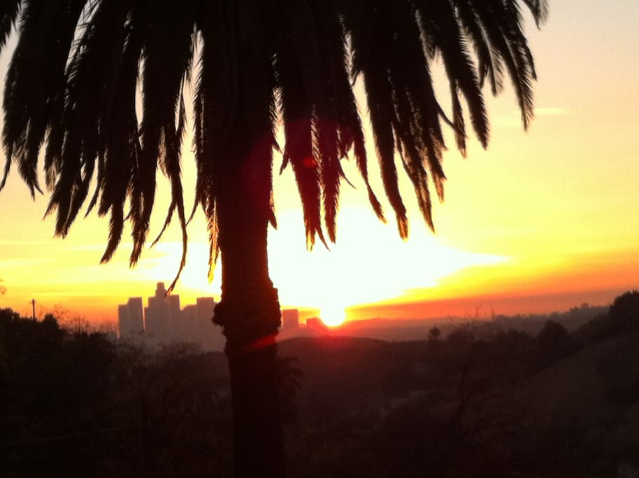 take in stunning sunset views of Downtown LA from the garden!