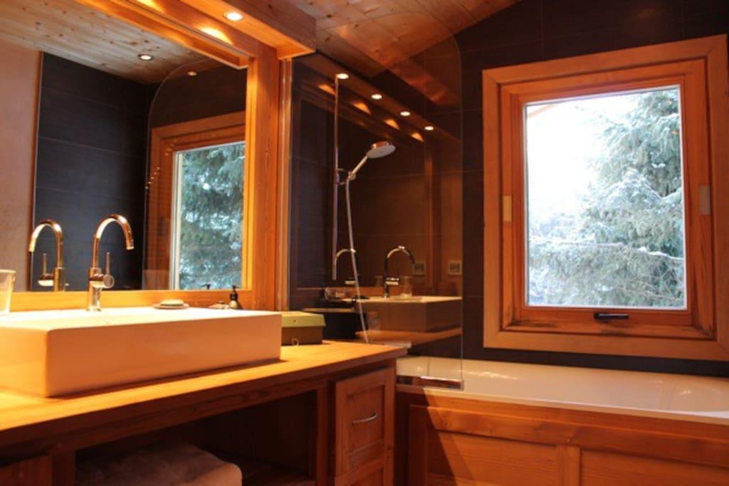 Salle de bains ( wc ) de la master bedroom