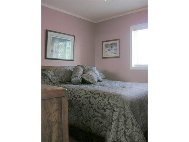Cozy, clean & quiet Queen bedroom near the Calgary - Cayley - House