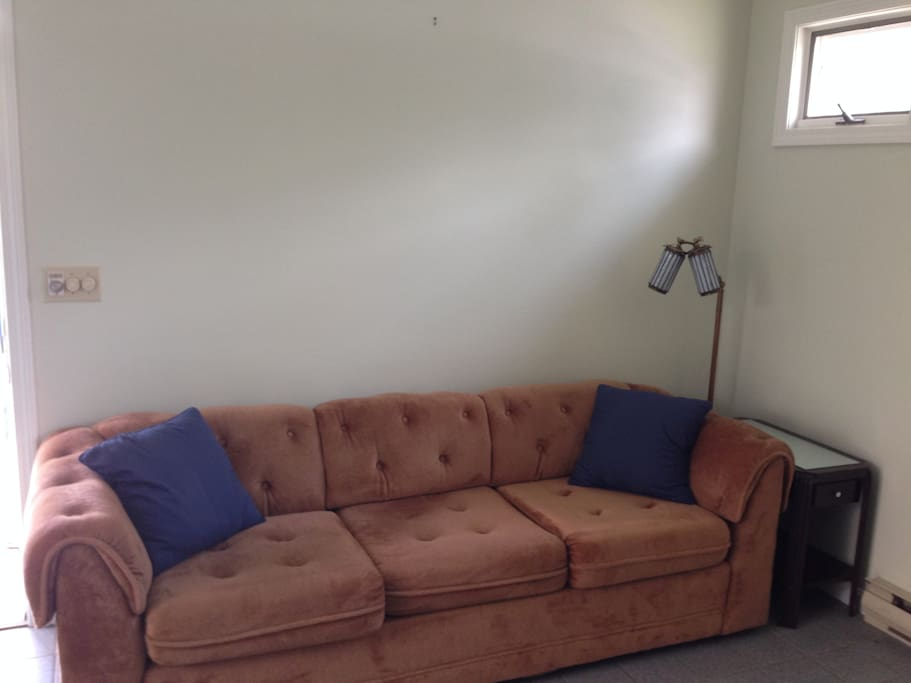 pullout couch in the living room