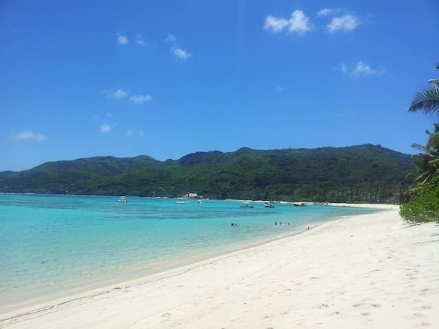 4-BR apartment close to Anse Royale - Anse Royale - Appartement