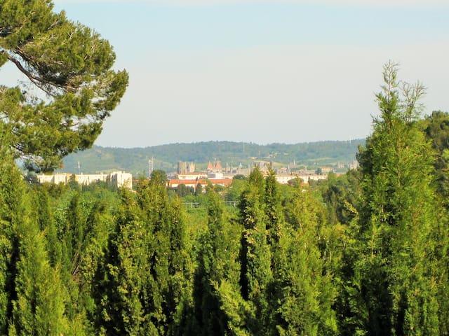 gite 4 chambres: domaine de Poulharies Carcassonne - Aude - Appartement en résidence