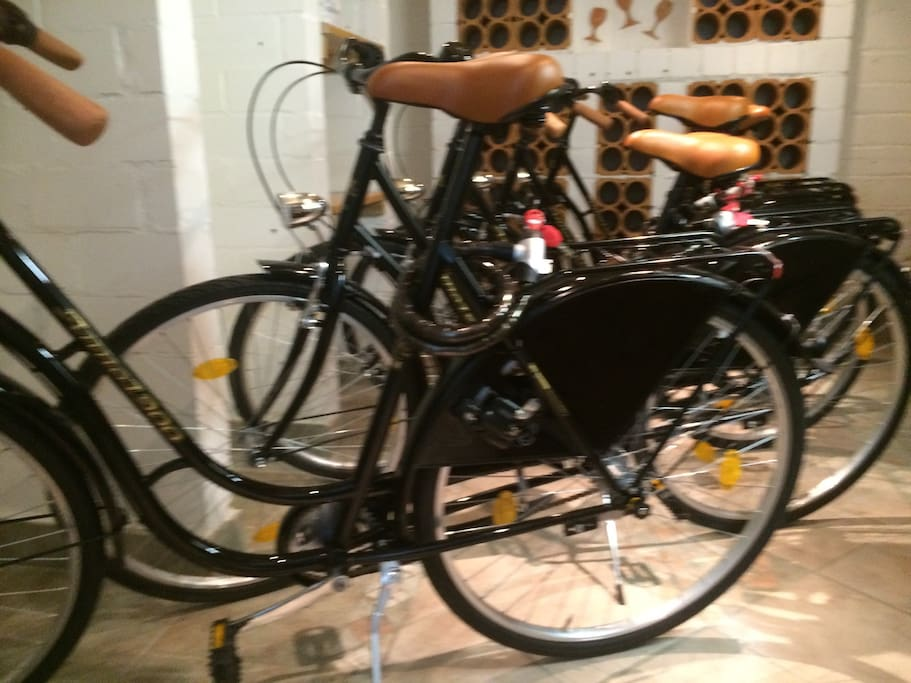 6 kostenlose Hollandbikes