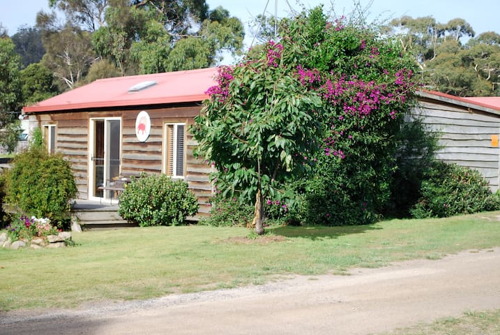 Beach Cottage in the heart of Coles Bay - Coles Bay - House