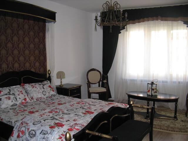 Central Villa Apartment Sibiu