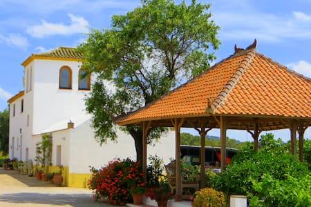 Suryalila Retreat Centre - Villamartín - Andre