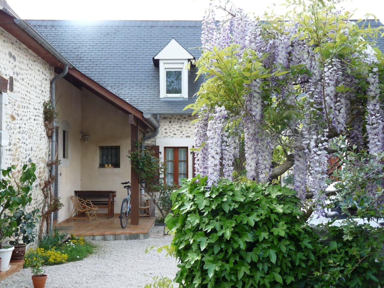 notre maison béarnaise avec la glycine au printemps
