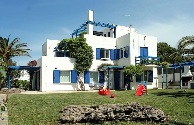 JASMINE Suite in PALM TREES VILLA on Andros isl.