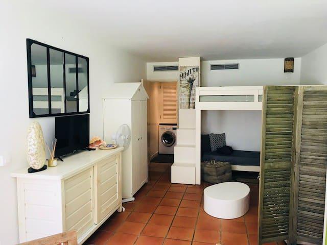 Superbe appartement sous les cocotiers coté mer