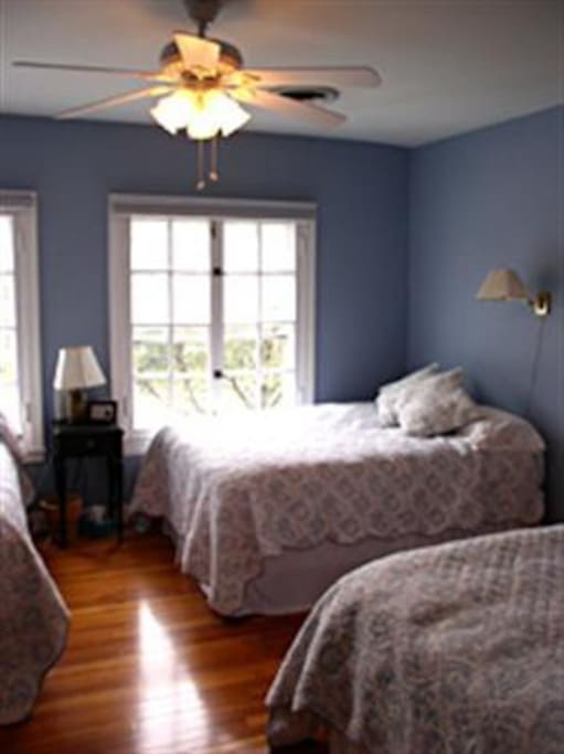Blue Bedroom - 3 full size beds