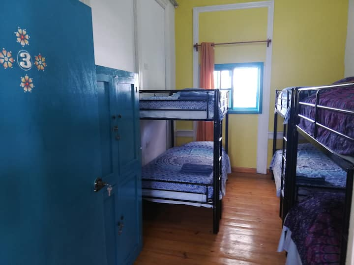 Gingerbread Dormitory Room 3