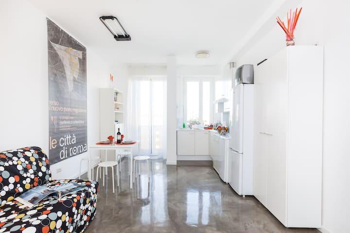 Apartment sunny, clean near Metro A - Roma - Pis