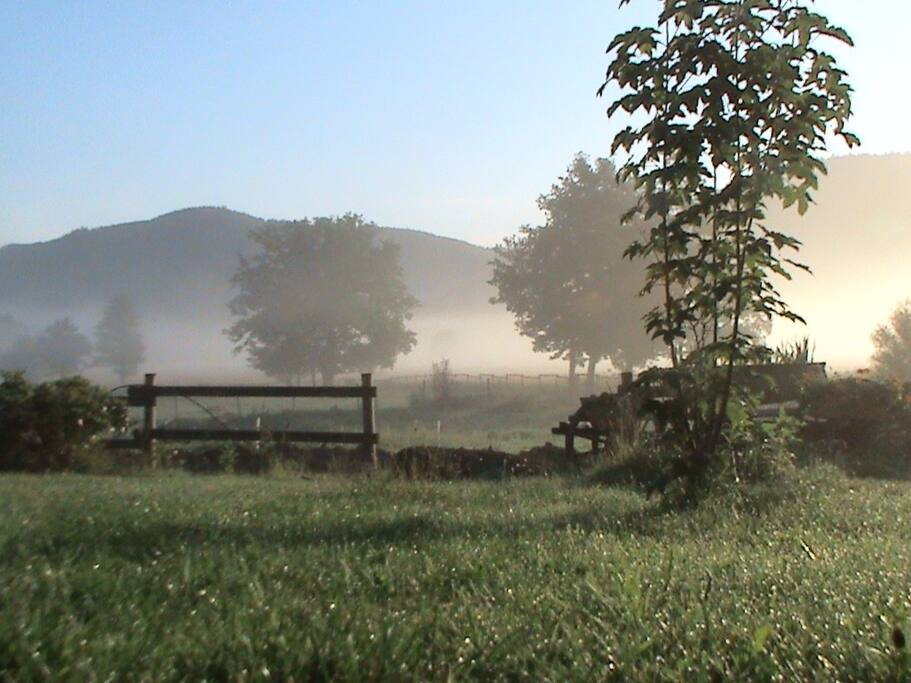 An autumn morning.