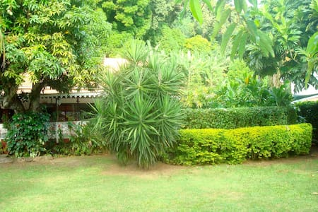 Chambre, salon ext. piscine jardin - Punaauia - Haus