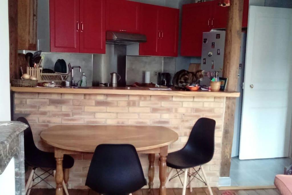 la cuisine ouverte et le coin repas