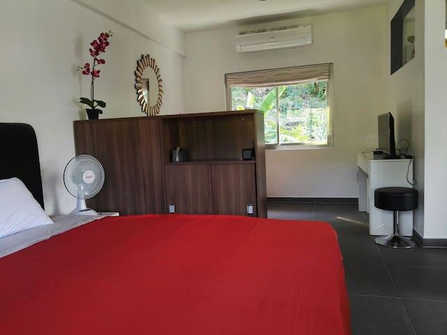 Chambre 1 - Grande suite parentale équipé d'un king size bed et canapé lit