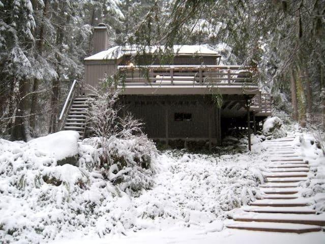 Cozy Mount Baker snowline cabin - グレイシャー - 一軒家