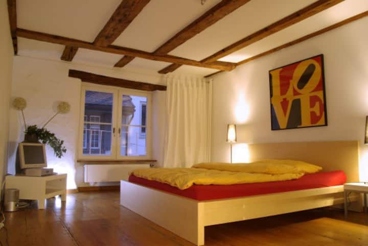 Room in the centre/Old Town in Basel