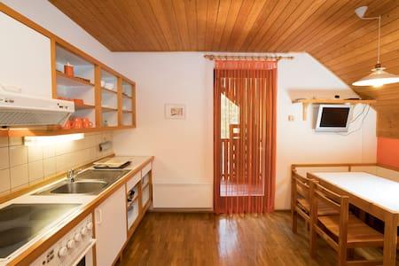 Apartment ENCIJAN - Ukanc - Leilighet