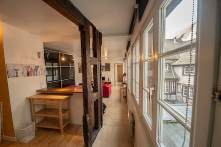 Charming apartment of 50 sq meters, full of light, in the pedestrian centre of Strasbourg for 2-4 persons. Fully furnished one-bedroom flat, an additional convertible sofa in the living room. Newly installed kitchen and bathroom.  The apartment is on the  second floor of a historical building.
