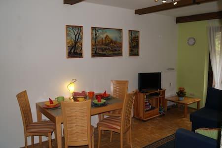 Apartment, Altachweg, Saalbach - Saalbach