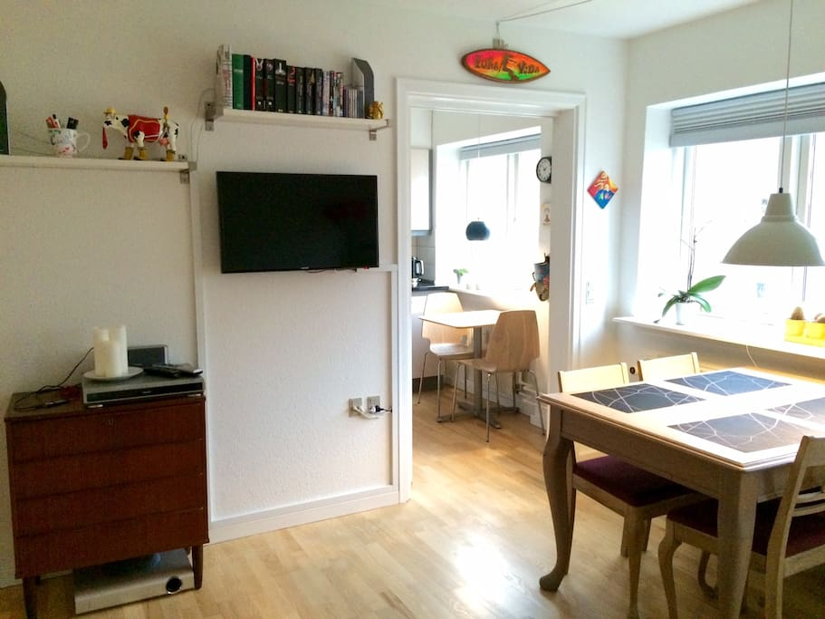 Cosy Studio Apt with garden Apartments for Rent in