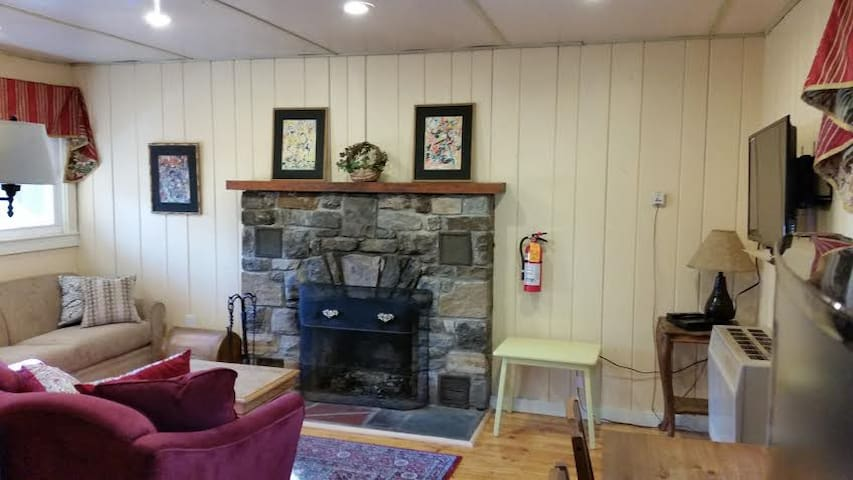 Private Adirondacks 1 bedroom Cabin - Johnsburg  - Cabin