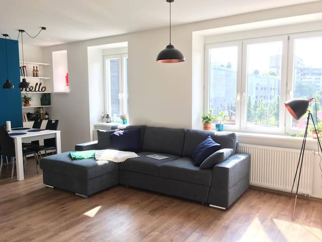 Room in the cozy flat near to city centre
