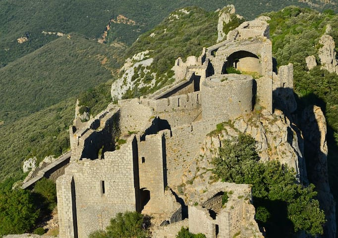 If you like castles, this area has rather a lot! It's Cathar country - and their castles sit high on top of mountains all over the region.  We're perfectly situated for you to discover them all!