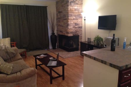 Updated Snowshoe 1BR - Snowshoe - Apartment