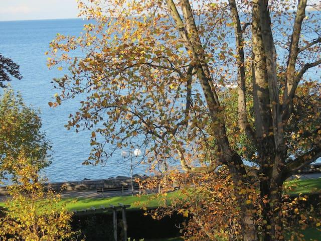 Bord du lac : adorable deux pièces - Vevey - Appartement