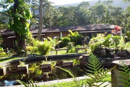 CHALÉ 4 - Hostel do Vale - BAHIA - Palmeiras - Chatka w górach