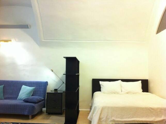 Excellent Renovated apartment - Bolshaya Trosna