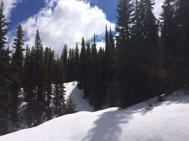 """The Ski in Ski out """"corner unit"""" at Apex"""