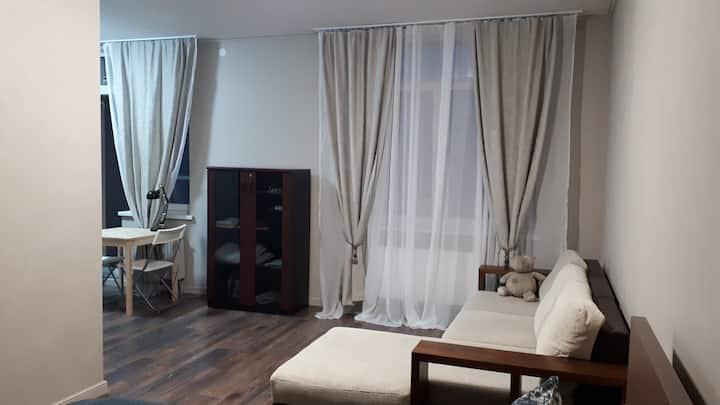Уютная квартира с одной спальней и диваном.