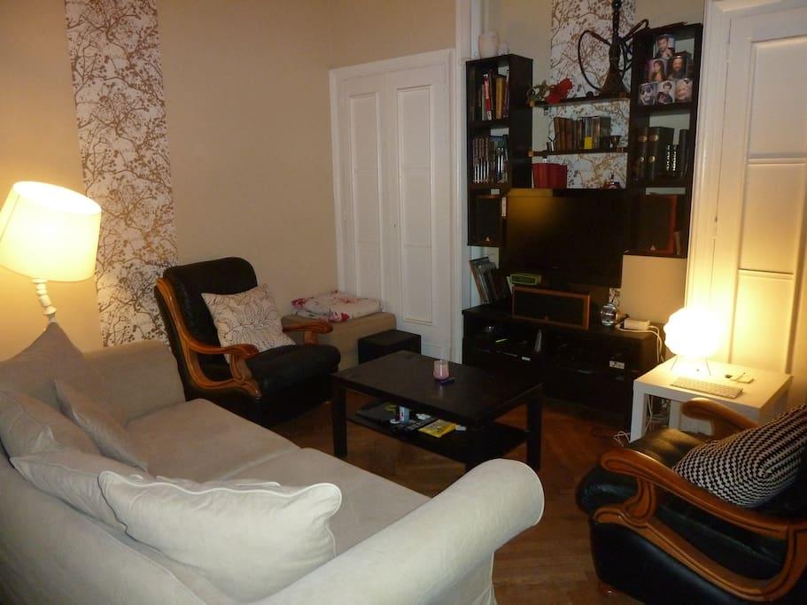 Grand salon (avec TV et home cinéma).
