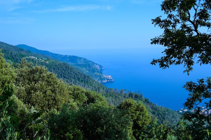 STONE COTTAGE OVERLOOKING THE SEA - Vernazza - Cabaña