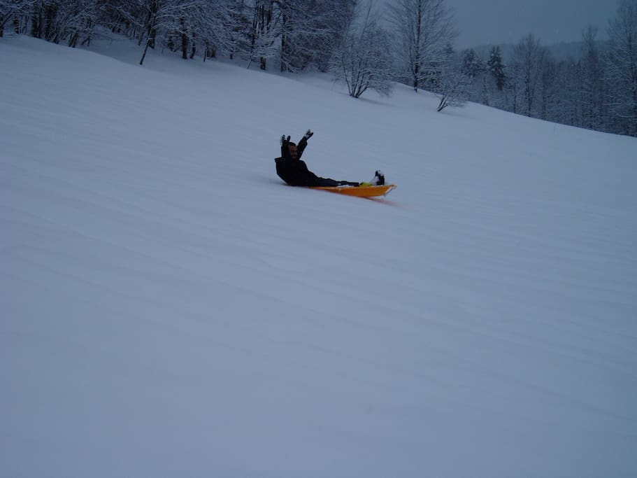 Sledding down the hill in the back yard.