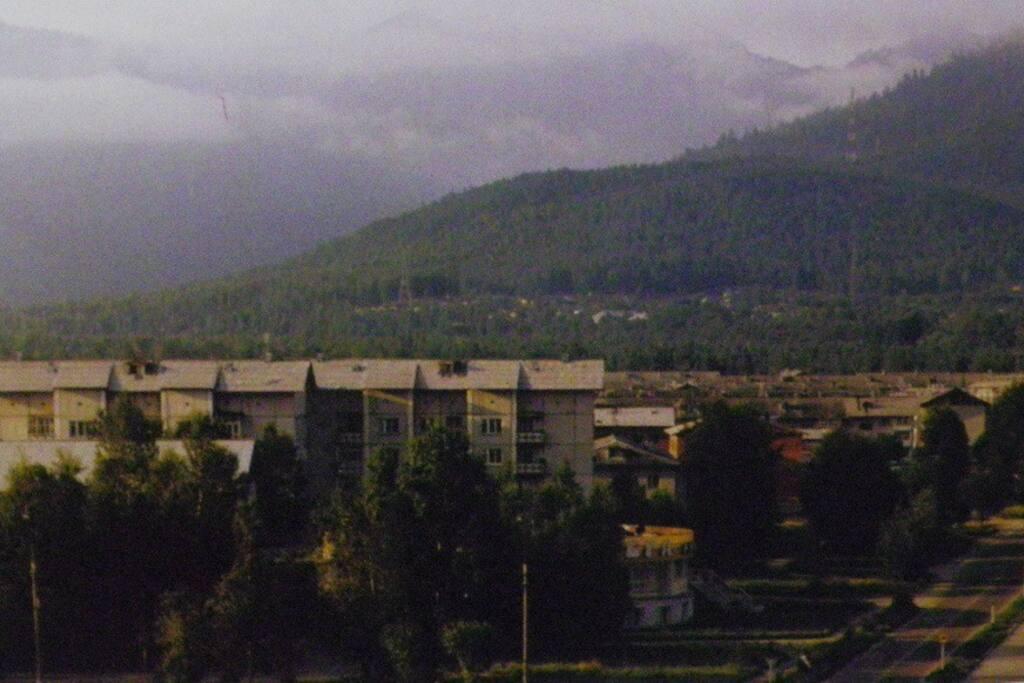 Байкальск расположен на берегу Байкала у подножия горного хребта Хамар-Дабан.