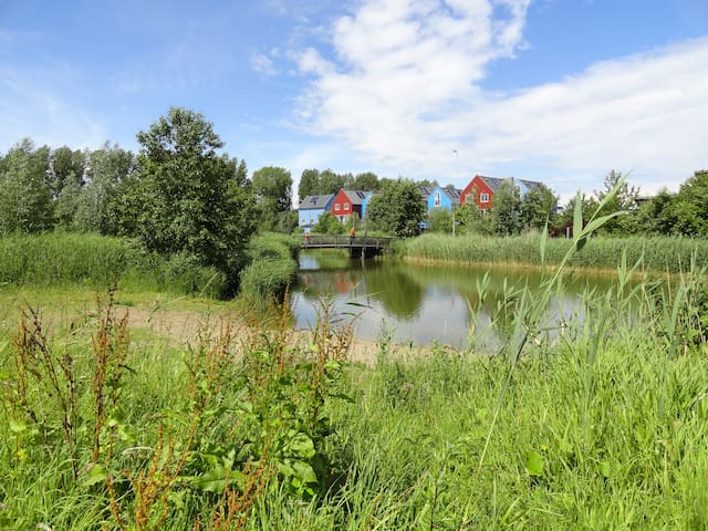 Unique studio in Culemborg - Culemborg