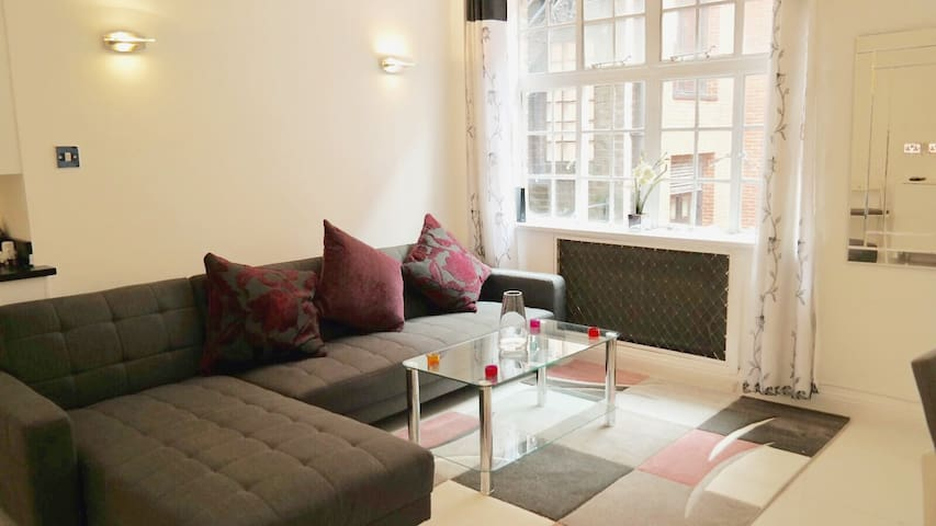 Fantastic 1 bedroom flat in the heart of Mayfair