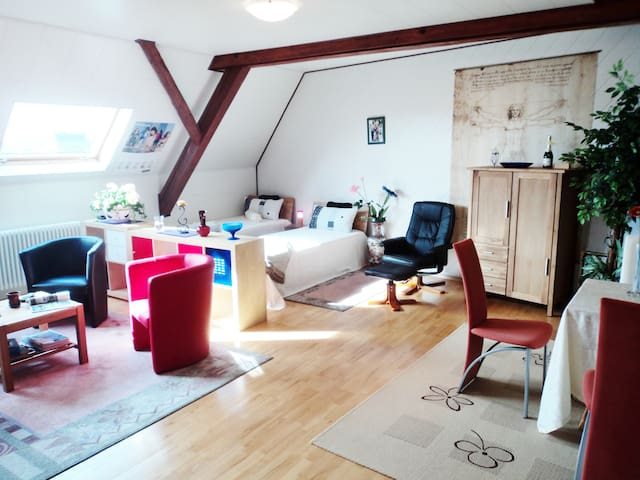 Luxury flat in Southern Germany - Langenenslingen - Huis