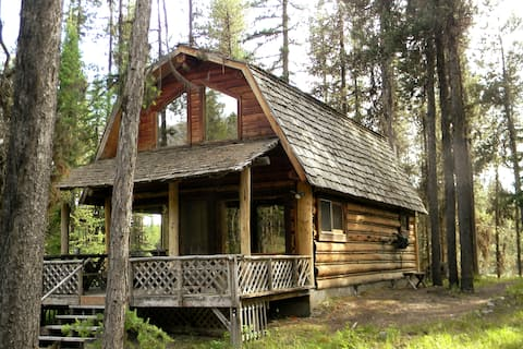 'Gray Wolf' cozy cabin nestled in the pines.