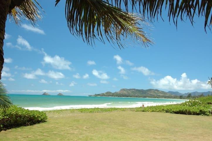 Tropical Oasis near beach in Kailua - Kailua