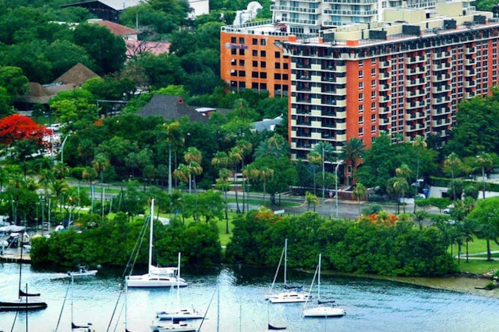Coconut Grove is one of the loveliest areas of Miami, offering the best of city life and proximity to lovely parks and the waters of the bay.