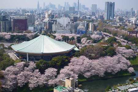 Staying at Central of TOKYO!! - Talo
