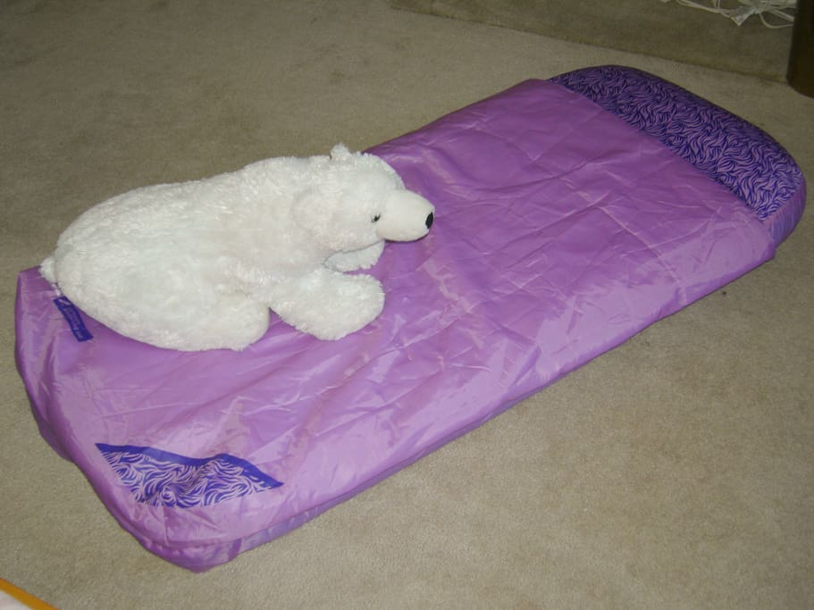 This is the child size airbed with it's own sleeping bag.  Comfortable and fun for kids up to 7-years-old.